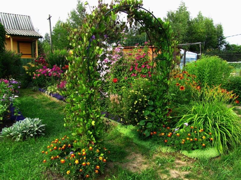 In the garden.