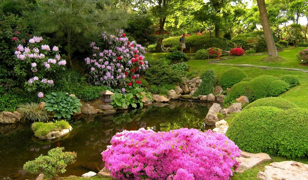 Штучна водойма в саду в оточенні квіткових насаджень.