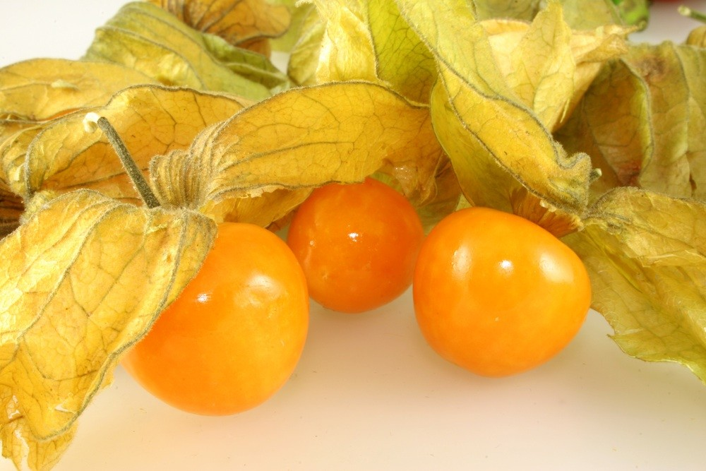 The fruits of physalis pubescent.