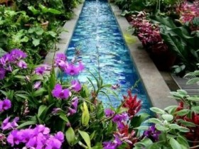 Красивый водоем в саду