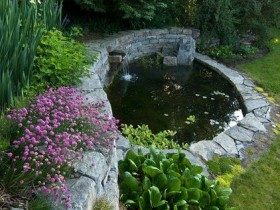 A small pond in the garden