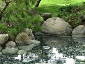 Интересный дизайн водоема на даче