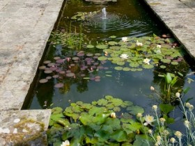 The pond in the Italian style