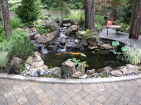 Design of a garden pond