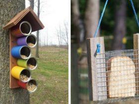 Как сделать съедобную кормушку для птиц фото 493