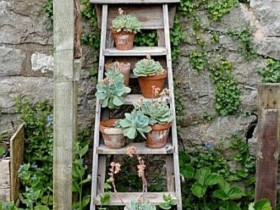 Vertical gardening with outdoor stairs