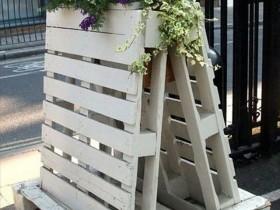Vertical gardening on pallets