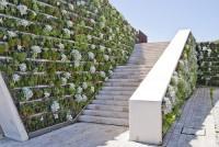 Вертикальное озеленение садовой лестницы