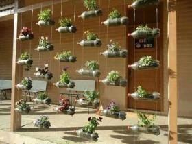 Option of vertical gardening garden