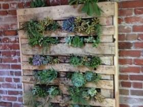 A homemade version of vertical gardening