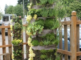 Vertical gardening a private house