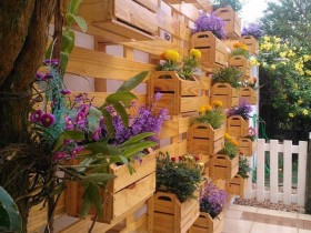 Vertical gardening in wooden boxes