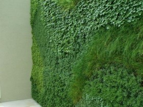 Interesting idea of vertical gardening garden plot