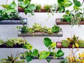 The modern idea of vertical gardening