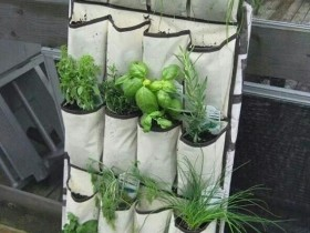 Vertical gardening on soft stand