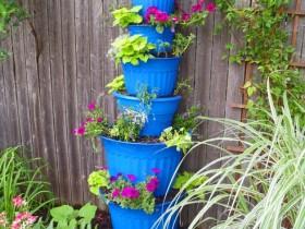 Vertical gardening garden with your own hands