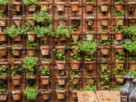 Vertical gardening garden clay pots