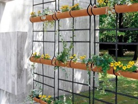 One of the options for vertical gardening garden