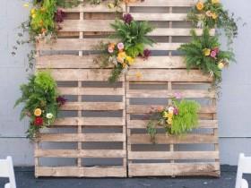 Vertical gardening on wooden pallets