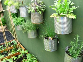 The simple idea of vertical gardening garden