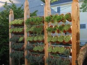 Welcome to vertical gardening garden