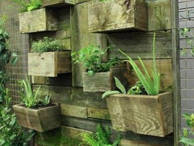 Vertical gardening using wooden containers