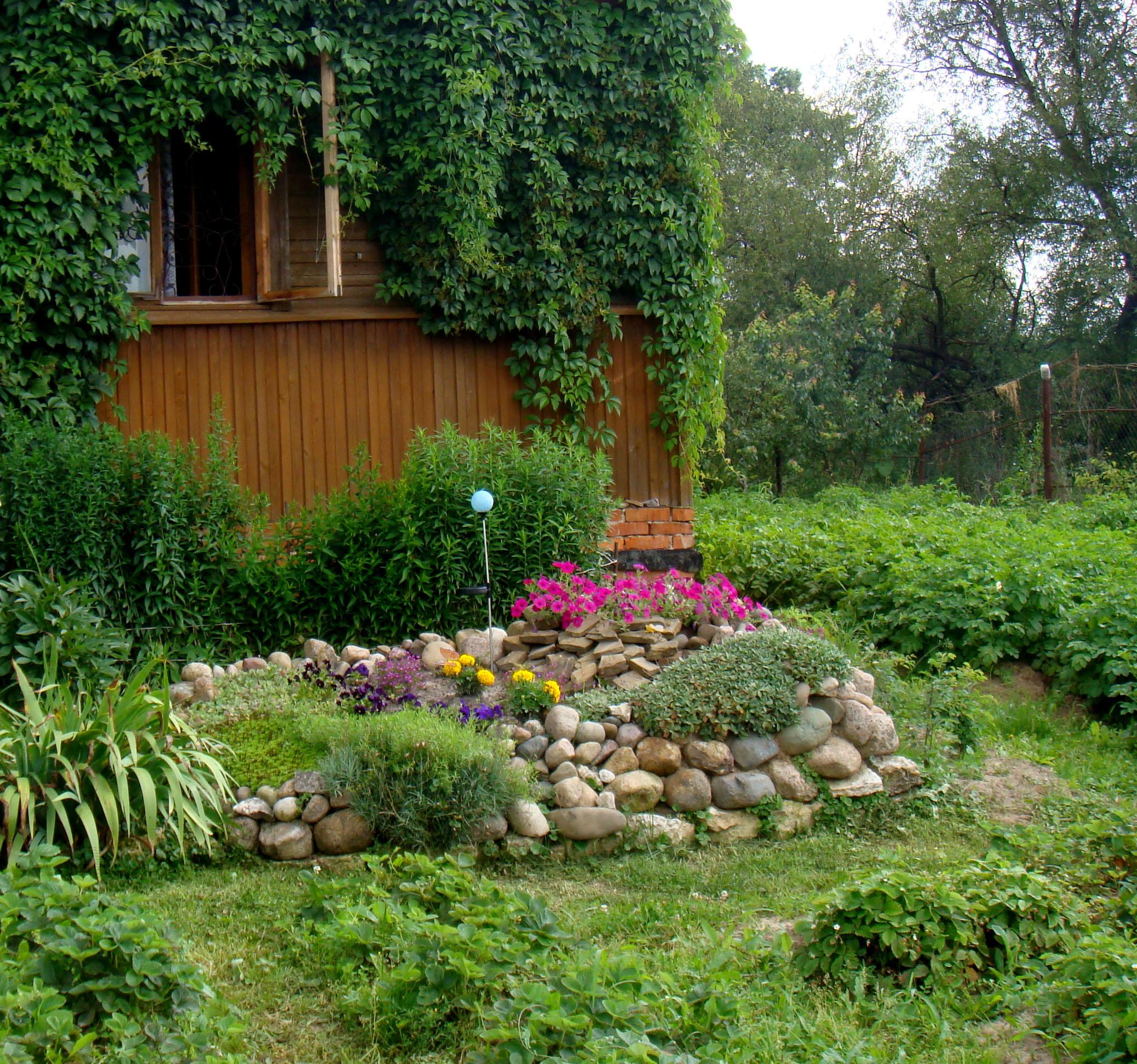Альпийские горки в саду своими руками