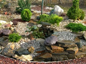 Beautiful rock garden in the garden