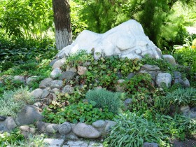The rock garden at the cottage