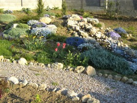 Rock garden in the gardening area