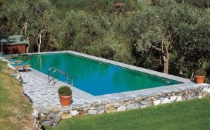 The advantages and disadvantages of the most popular types of pool for winter
