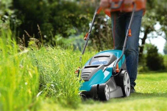 Стрижка газона как борьба с сорняками