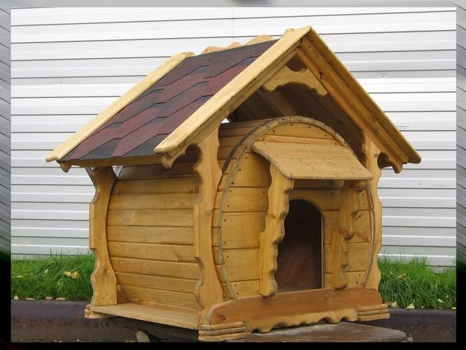 фото собака в будке