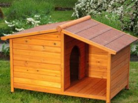 Wooden box for dog