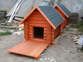 Dog house with frame