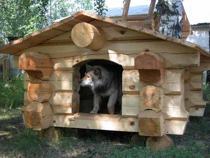 Фото домиков для собак своими руками