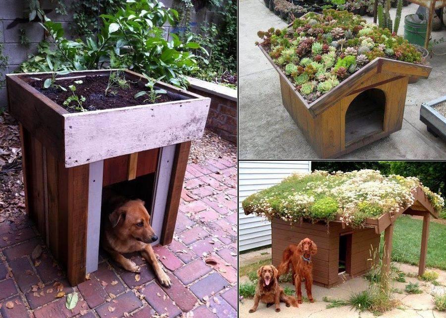 Будка для собаки своими руками из подручных материалов фото