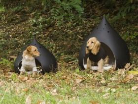 Designer kennels for dogs