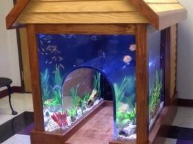Будка для собаки с аквариумом