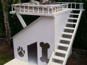 Designer two-storey booth for the dog
