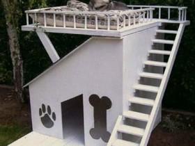 Дизайнерская двухэтажная будка для собаки