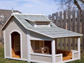Stylish design dog kennels with a shed