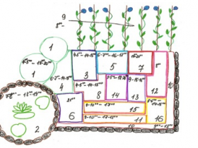 The sketch of the flower clock