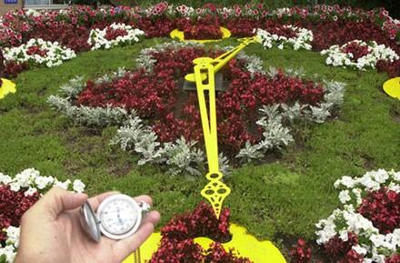 Самодельные цветочные часы