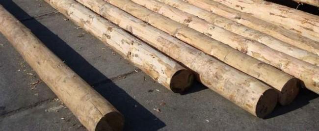 Защита древесины - залог долговечности