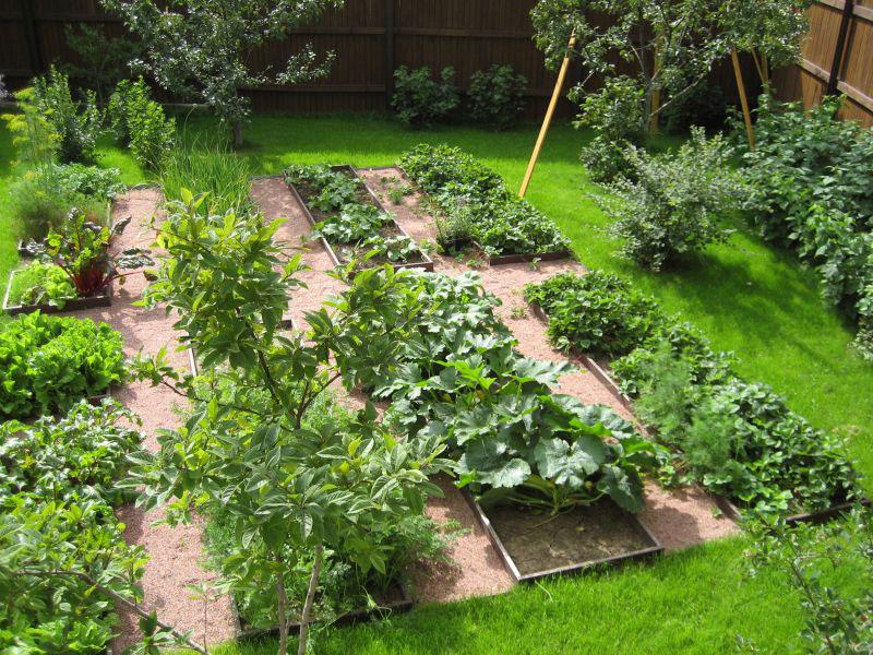 было как оформить землю под огород в аренду Олвина