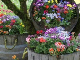 Design idea flower beds