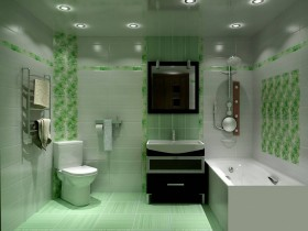 The combined bathroom in green color