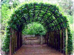 Originally designed trellis