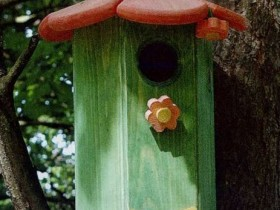 Homemade house for squirrels